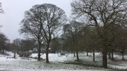 Lyme Park with a dusting of snow